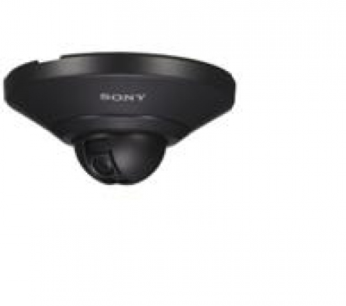 Camera Sony SNC-DH110/B