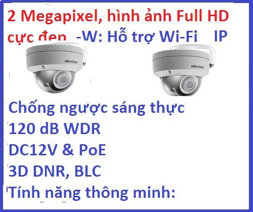 Hikvision  DS-2CD2121G0-I (2MP, H.265+)