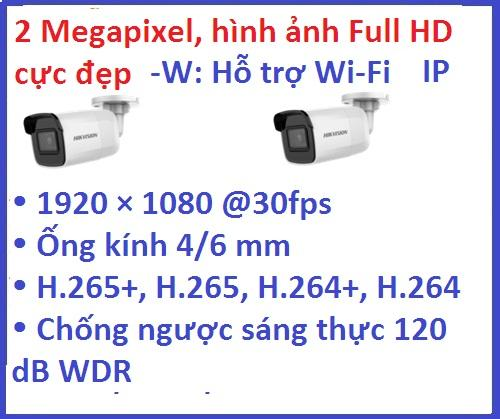 Hikvision_Camera ip_DS-2CD2021G1-IW (2MP,...