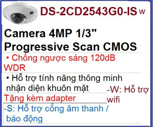 Hikvision_Camera ip_DS-2CD2543G0-IWS...
