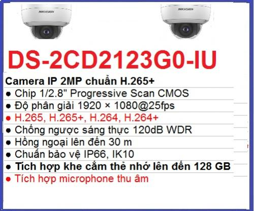 Hikvision_Camera ip_DS-2CD2123G0-IU ip_bảo...