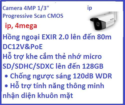 Hikvision_Camera ip_DS-2CD2T43G0-I8 (4 M /...