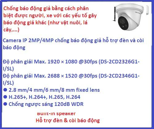 Hikvision_Camera ip_DS-2CD2346G1-I/SL (Đèn...
